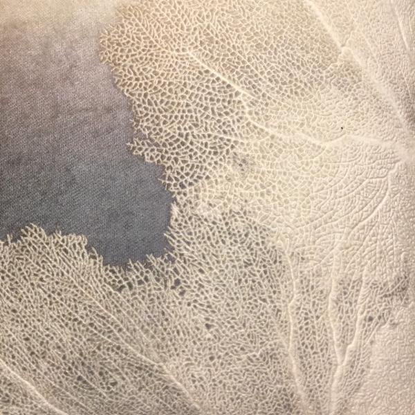 Aviva Stanoff organic textiles