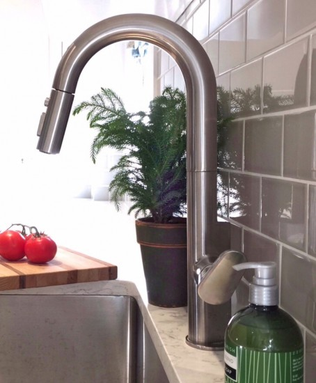 Beale Pull Down Kitchen Faucet
