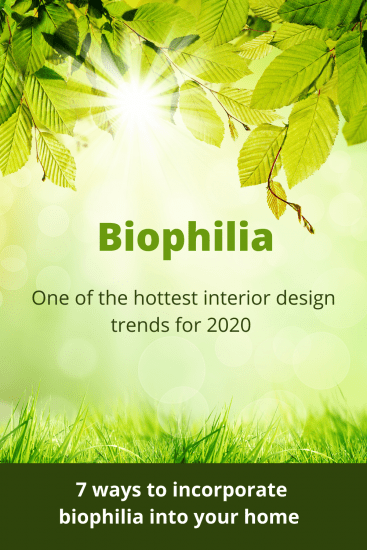 incorporating biophilia into your home