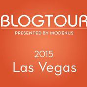 Another BlogTour and this time it's Vegas!