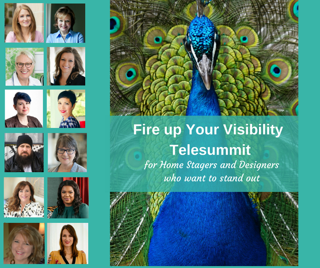 Fire up Your Visibility telesummit