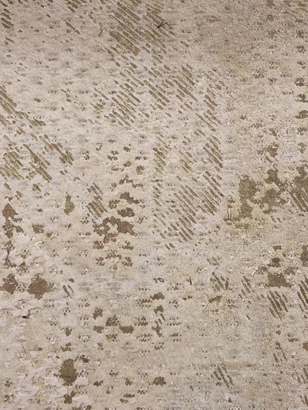 carpet glue on cement floor