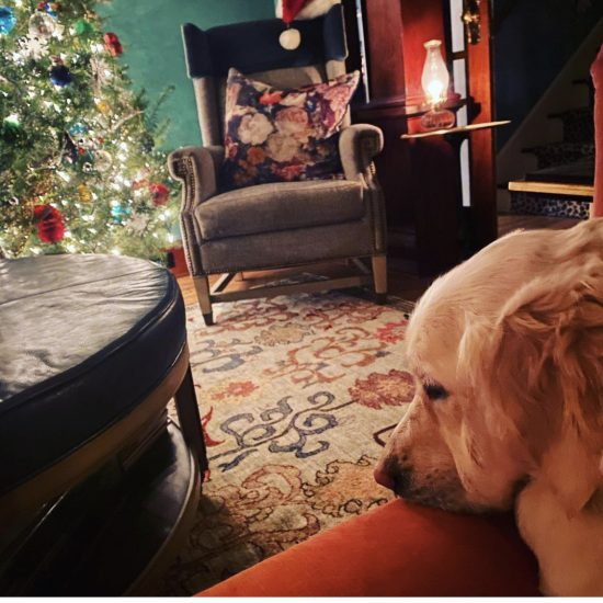 How to photograph Christmas with a smartphone