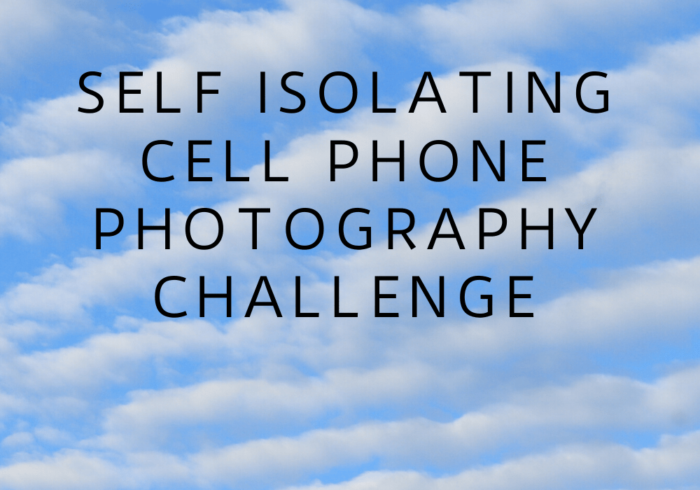 cellphone photography challenge