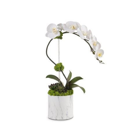 white faux orchid