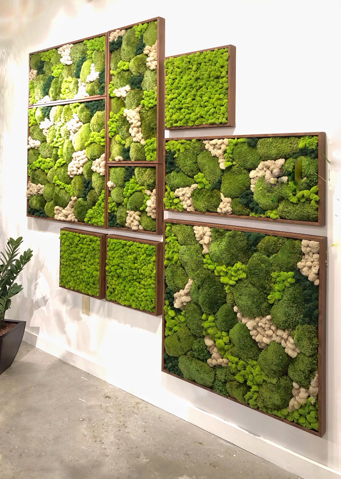 wall art with moss plants