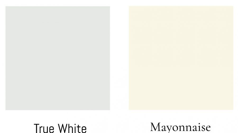 comparing cool and warm white paint side by side